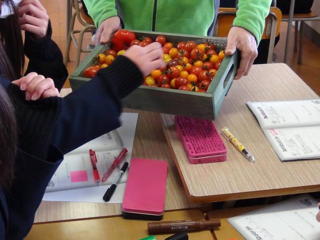 トマトを使った商品の開発体験